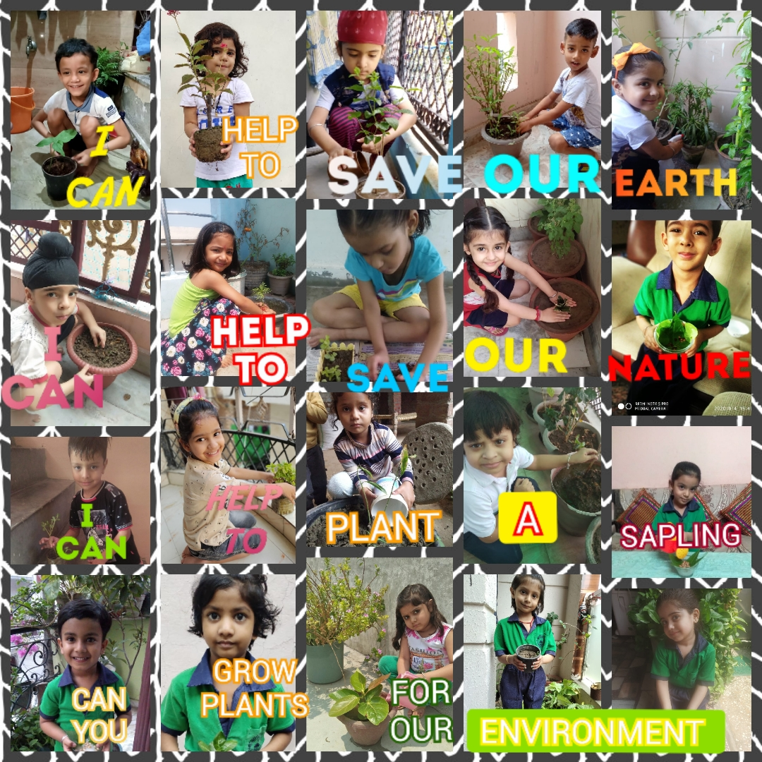 Here we present our Tiny Tots ▪︎▪︎▪︎doing our bit to spread awareness on how to protect ourselves & our families with praiseful divine Nature 🌴💐